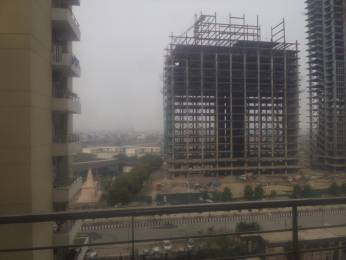 1950 sqft, 3 bhk Apartment in Builder Project Sector 137, Noida at Rs. 1.1700 Cr