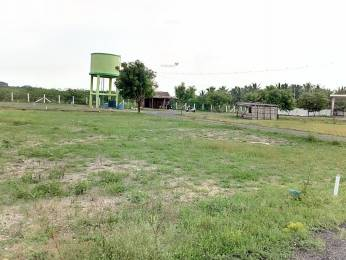 1800 sqft, Plot in Builder Project Kalapatti, Coimbatore at Rs. 26.0000 Lacs