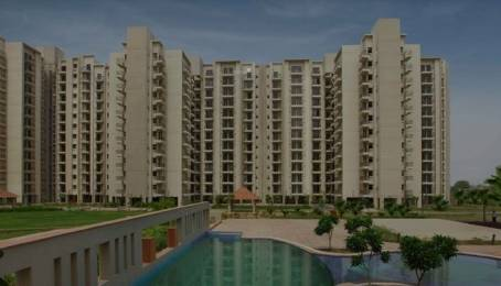1576 sqft, 3 bhk Apartment in Umang Summer Palms Sector 86, Faridabad at Rs. 55.0000 Lacs