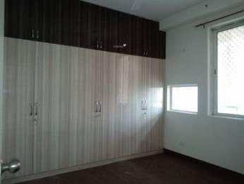 1564 sqft, 2 bhk Apartment in Jaypee Klassic  Sector 129, Noida at Rs. 12000