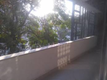 2430 sqft, 3 bhk BuilderFloor in DLF Silver Oaks Sector 26 Gurgaon, Gurgaon at Rs. 2.1500 Cr