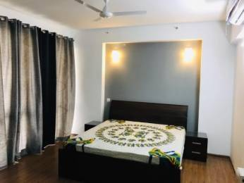3570 sqft, 4 bhk BuilderFloor in Builder Project Sector 49, Gurgaon at Rs. 2.5000 Cr