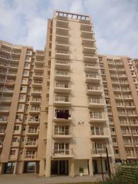 1300 sqft, 2 bhk Apartment in Builder Project Dharuhera, Gurgaon at Rs. 29.0000 Lacs