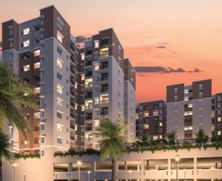 880 sqft, 1 bhk Apartment in Provident Capella 1 Whitefield Hope Farm Junction, Bangalore at Rs. 48.0000 Lacs