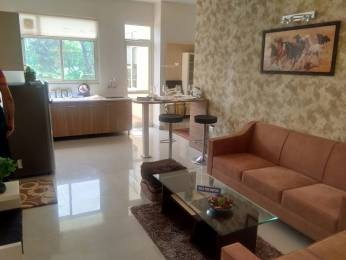 610 sqft, 1 bhk Apartment in Terra Lavinium Sector 75, Faridabad at Rs. 20.4200 Lacs