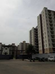 1575 sqft, 3 bhk Apartment in Emaar Palm Hills Sector 77, Gurgaon at Rs. 85.0000 Lacs