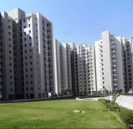 1576 sqft, 2 bhk Apartment in Umang Summer Palms Sector 86, Faridabad at Rs. 16000