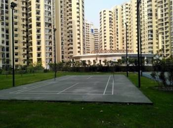 1685 sqft, 3 bhk Apartment in Paramount Floraville Sector 137, Noida at Rs. 75.8250 Lacs