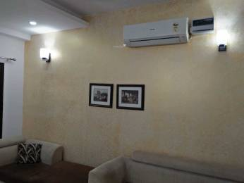 1800 sqft, 3 bhk BuilderFloor in Builder Project Punjabi Bagh, Delhi at Rs. 3.0000 Cr