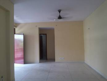1300 sqft, 3 bhk Apartment in Builder Project mayur vihar phase 1, Delhi at Rs. 1.7000 Cr