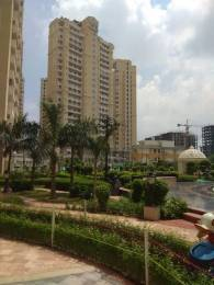 1970 sqft, 3 bhk Apartment in Builder Project Yamuna Expressway, Greater Noida at Rs. 88.6500 Lacs