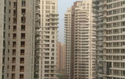 2595 sqft, 3 bhk Apartment in Pioneer Presidia Sector 62, Gurgaon at Rs. 2.4100 Cr