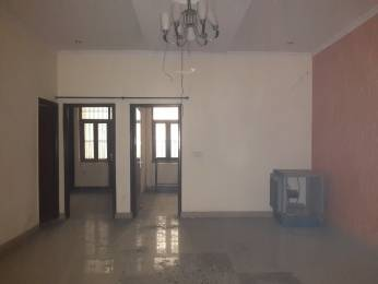 1480 sqft, 3 bhk BuilderFloor in Builder Project Sector 49, Faridabad at Rs. 46.5000 Lacs
