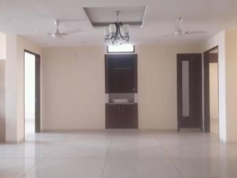 2250 sqft, 3 bhk BuilderFloor in Builder Project Sehatpur, Faridabad at Rs. 58.5000 Lacs