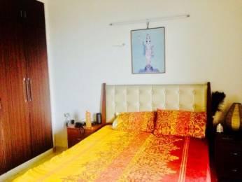 1480 sqft, 1 bhk Apartment in Saya Zenith Ahinsa Khand 2, Ghaziabad at Rs. 75.0000 Lacs
