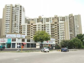 1695 sqft, 3 bhk Apartment in Gulshan Ikebana Sector 143, Noida at Rs. 90.0000 Lacs