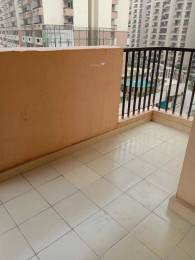 525 sqft, 1 bhk Apartment in Gaursons 14th Avenue Sector 16C Noida Extension, Greater Noida at Rs. 6000