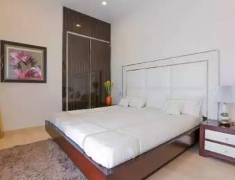 1806 sqft, 3 bhk Apartment in Trishla City Bhabat, Zirakpur at Rs. 56.0000 Lacs