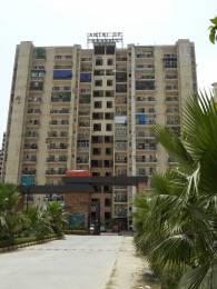 550 sqft, 1 bhk Apartment in The Antriksh Kanball 3G Sector 77, Noida at Rs. 10500