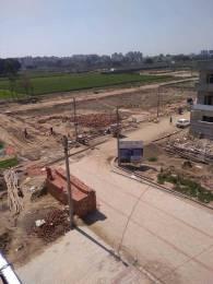 1008 sqft, Plot in Shiwalik Palm City Sector 127 Mohali, Mohali at Rs. 25.6200 Lacs