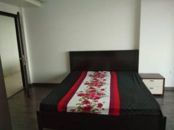 2500 sqft, 3 bhk Apartment in TATA Primanti Sector 72, Gurgaon at Rs. 50000