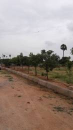 1800 sqft, Plot in Builder Project Amangal, Hyderabad at Rs. 13.0000 Lacs