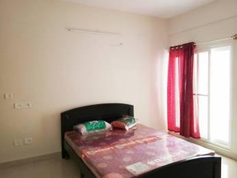 1250 sqft, 2 bhk Apartment in Builder Project Krishnarajapura, Bangalore at Rs. 30000