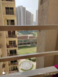 966 sqft, 2 bhk Apartment in Paras Tierea Sector 137, Noida at Rs. 42.5000 Lacs