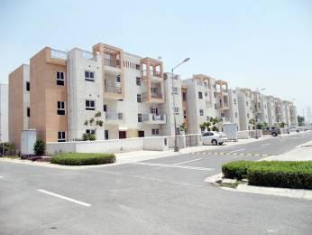 1045 sqft, 3 bhk BuilderFloor in BPTP Park Elite Floors Sector 85, Faridabad at Rs. 34.0000 Lacs