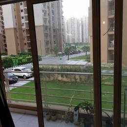 1234 sqft, 3 bhk Apartment in Logix Blossom Greens Sector 143, Noida at Rs. 11500