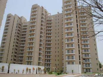 976 sqft, 2 bhk Apartment in BPTP Park Elite Premium Sector 84, Faridabad at Rs. 40.0000 Lacs