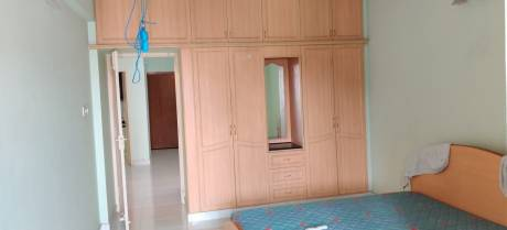 1650 sqft, 3 bhk Apartment in Builder Project Nungambakkam, Chennai at Rs. 45000