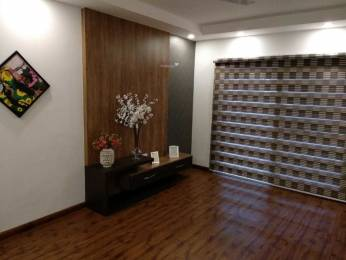 3000 sqft, 4 bhk BuilderFloor in Builder Project Sector 49, Gurgaon at Rs. 2.3500 Cr