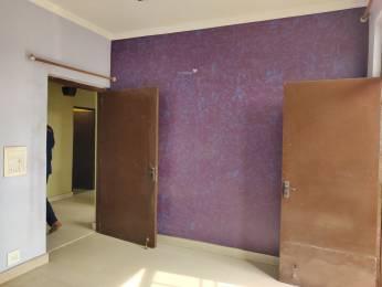 1500 sqft, 2 bhk BuilderFloor in Ansal Palam Vihar Plot Palam Vihar Extension, Gurgaon at Rs. 32000