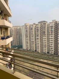 1315 sqft, 3 bhk Apartment in Purvanchal Royal Park Sector 137, Noida at Rs. 73.0000 Lacs