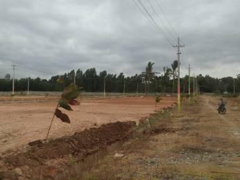 1200 sqft, Plot in Builder Project Yelahanka New Town, Bangalore at Rs. 21.6000 Lacs