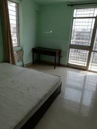1650 sqft, 3 bhk Apartment in DDA Flats Vasant Kunj Vasant Kunj, Delhi at Rs. 1.9500 Cr