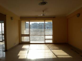 1800 sqft, 3 bhk Apartment in Reputed Saraswati Narmada Apartments Vasant Kunj, Delhi at Rs. 1.8500 Cr