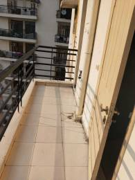 1246 sqft, 2 bhk Apartment in Gaursons Grandeur Sector 119, Noida at Rs. 50.0000 Lacs