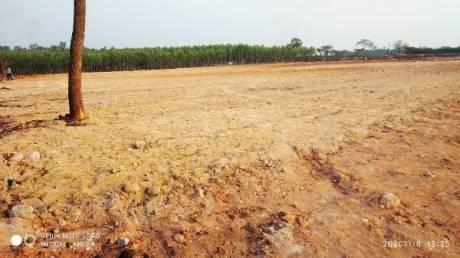 1575 sqft, Plot in Builder Project Konthamuru, East Godavari at Rs. 22.0000 Lacs