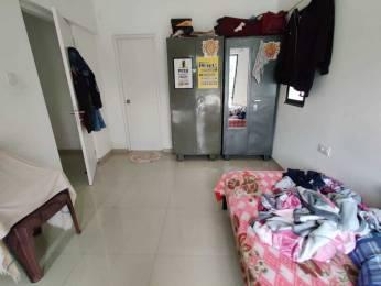 980 sqft, 2 bhk Apartment in Kalpataru Serenity Manjari, Pune at Rs. 20000