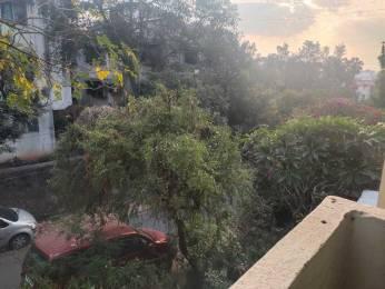 600 sqft, 1 bhk Apartment in Pharande Dharamveer Park Bibwewadi, Pune at Rs. 11500