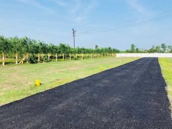 600 sqft, Plot in Builder Project Pudupakkam, Chennai at Rs. 9.9000 Lacs