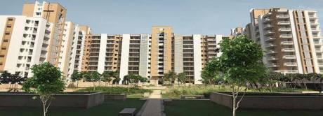 1300 sqft, 2 bhk Apartment in Puri Pratham Sector 84, Faridabad at Rs. 49.0000 Lacs