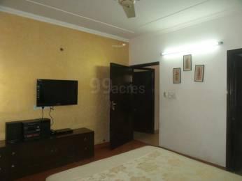 2000 sqft, 4 bhk Apartment in Builder RWA Saket Block J Saket, Delhi at Rs. 75000