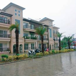 1350 sqft, 3 bhk Apartment in Future Casa Homes Sector 115 Mohali, Mohali at Rs. 44.9000 Lacs