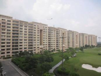 2100 sqft, 2 bhk Apartment in MGF The Vilas Sector 25, Gurgaon at Rs. 75000