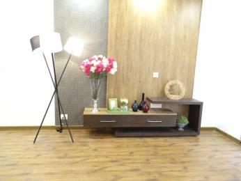 2150 sqft, 3 bhk Apartment in TATA Primanti Sector 72, Gurgaon at Rs. 45000