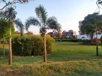 500 sqft, 1 bhk Apartment in Royale Estate Royale Gardens Manak Majra, Mohali at Rs. 14.5000 Lacs