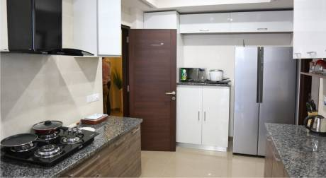 1728 sqft, 3 bhk Apartment in Builder Project Passi Nagar, Ludhiana at Rs. 1.0365 Cr